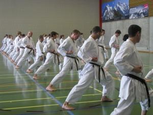 Karate in der Sporthalle