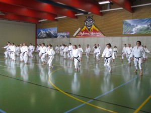 Karate in der Sporthalle